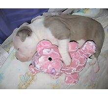 Sleep Tight Photographic Print