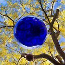 Blue Suspended From Yellow by Mark Ramstead