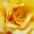 Yellow Madame by Melissa-Louise