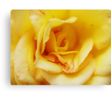 Yellow Madame Canvas Print