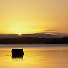 Bullocky's Rest Lake Samsonvale by GayeL Art