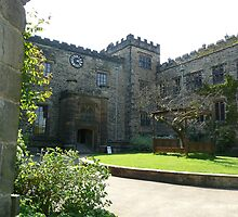 Townley Hall by Debbie Thatcher