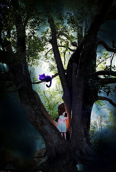 Alice in Wonderland - Series - One by Rookwood Studio ©