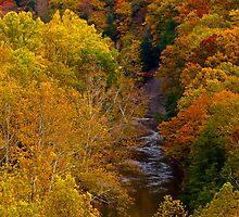"""Tinker's Creek and Autumn Foliage""  by Robert Burdick"
