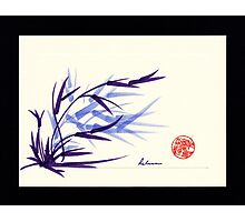 Huntington Gardens Plein Air Bamboo Drawing #2 Photographic Print