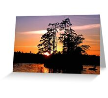 Into Shadow Greeting Card
