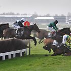 APMcCoy at Cheltenham by Nick  Gill
