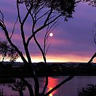 Purple Sunset-Reedy Lakes Geelong by neverforgotten