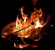 Marshmallow in fire by winterland