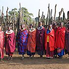 Maasai (Masai) Women of Kenya &amp; Tanzania  by Carole-Anne