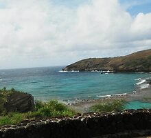 Hanauma Bay on the island of Oahu by tandj