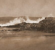 Tofino in Sepia by AnnDixon