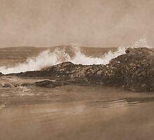 Tofino in Sepia by AnnDixon