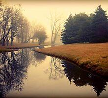 My November II by Beata  Czyzowska Young