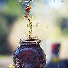 Splash by fRantasy