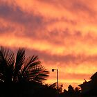 Orange Sunset In Suburbia by CatherineWinter
