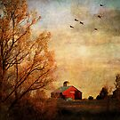 Old Red Barn by Margi