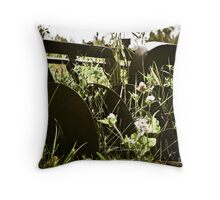 History of the West Throw Pillow
