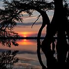 Arcing sunset by Bruce Bischoff