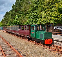 Waterford & Suir Valley Railway by Martina Fagan