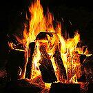Fire by Jessica Liatys