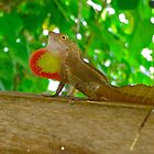 I Swallowed a Strawberry! by DebbyTownsend