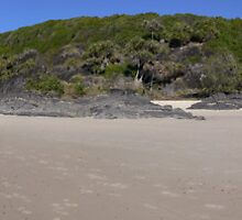 Cabarita panorama by PhotosByG