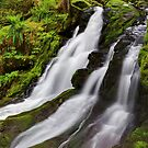Horseshoe Creek Falls I by Tula Top