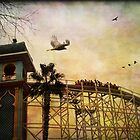 Roller Coaster by Margi