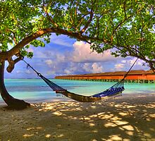 Tropical Paradise Hammock by michellebgphoto