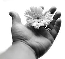 Handy Flower by matsljunggren