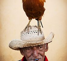 The chicken man by Stephen Colquitt