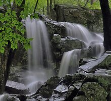 Appalachian Trail Waterfall by Stephen Vecchiotti