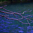 Stick over the river by Courtneystarr