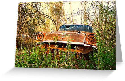 CHEVROLET in woods by bulldawgdude