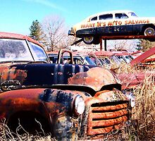 Martin's Auto Salvage by bulldawgdude