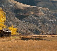 Bandlands in the Fall by mylitleye
