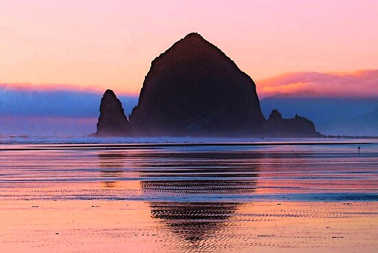 Summer Sunset at Haystack Rock by Tori Snow