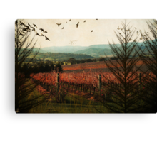 Autumn in the Vines Canvas Print