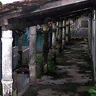 Latin Columns by aRj Photo