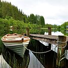 Loch Ard,Scotland by Jim Wilson