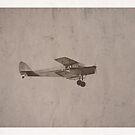 Bi Plane by Nick Sage