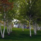 Painted Birch Trees by Monica M. Scanlan
