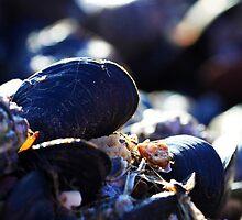 Winter sunset over Goodrington clams by Anna Goodchild