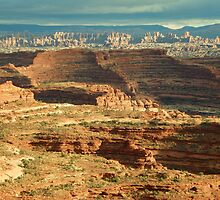 Overlooking the Needles in Canyonlands by David  Hughes