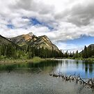 Mount Lorette Ponds by Teresa Zieba