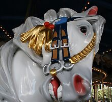 Carousel Horse by Hope A. Burger