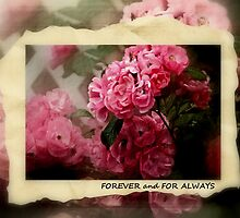 FOREVER and FOR ALWAYS by jules572