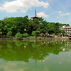 Sarusawa Pond, Nara by tomoenk6