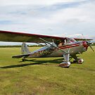 Luscombe , a light aircraft. by sandyprints